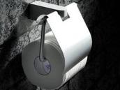 不锈钢卫生间纸巾盒