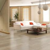 瑞嘉唯美地板30199 德国原装进口 环保板材 光滑木纹面