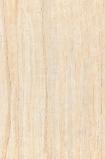 简一 D692216BHT 深色银杏木纹全通体 大理石瓷砖图片