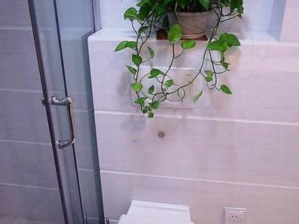 现代风格小户型卫生间绿植盆栽装修设计