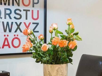 美式风格小户型餐厅餐桌盆栽图片欣赏