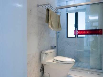 大别墅豪华卫生间马桶玻璃门装修设计