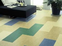 家装pvc石塑地板 天津pvc地板