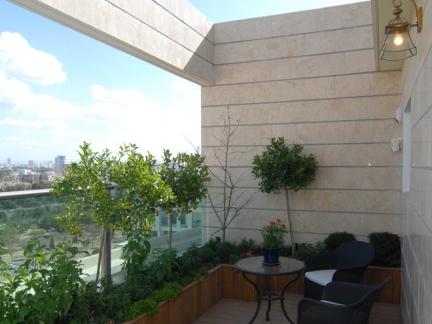 现代简约风格舒适一隅屋顶花园实景图