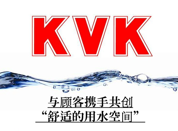 日本进口KVK恒温顶棚花洒KM800TJ1 SMA