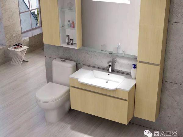 西文卫浴可非标定制浴室柜G900
