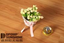 中国木地板十大品牌 德邦阳光地板 D601图片