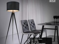 JXDJ台灯系列 现代简约黑/白两色落地灯JX1418LDD