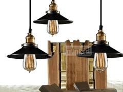 ZSBY吊灯系列 现代简约卧室餐厅客厅书房单头吊灯