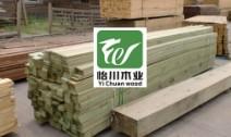 俄罗斯樟子松多少钱一方?哪家做樟子松?樟子松哪家批发?图片