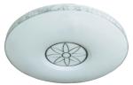 飞雕卧室灯 FD-LED-XDMX500Y雅明-透明
