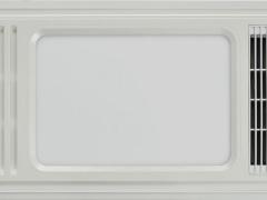 飞雕光辉双核动力(珠光白)FD/FHL600CB-01A