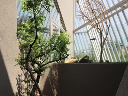 中式顶层阳台白色实木护栏装修设计