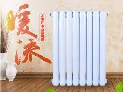 【艾米利亚散热器】钢制暖气片家用水暖片钢制壁挂式装饰散热器集