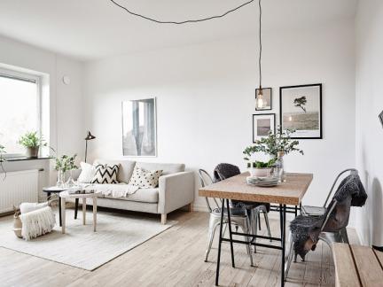 纯净自在气息 45平北欧风优雅公寓