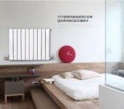 【世纪百盛散热器】家用暖气片铜铝复合壁挂式水暖散热器集中供暖图片