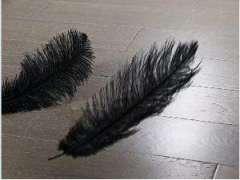 书香门地羽翼之灰实木复合地板