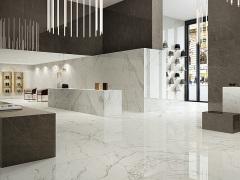 CasaItaliana意大利进口瓷砖XL系列D24051