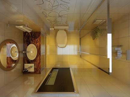 棕色现代风格卫生间吊顶装修图片