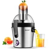 科顺(Kesun) 家用榨汁机 多功能果汁机 宝宝辅食果蔬榨汁 汁渣分离FM101 不锈钢