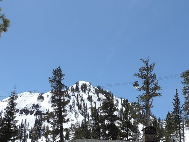 Olympic valley 楼盘