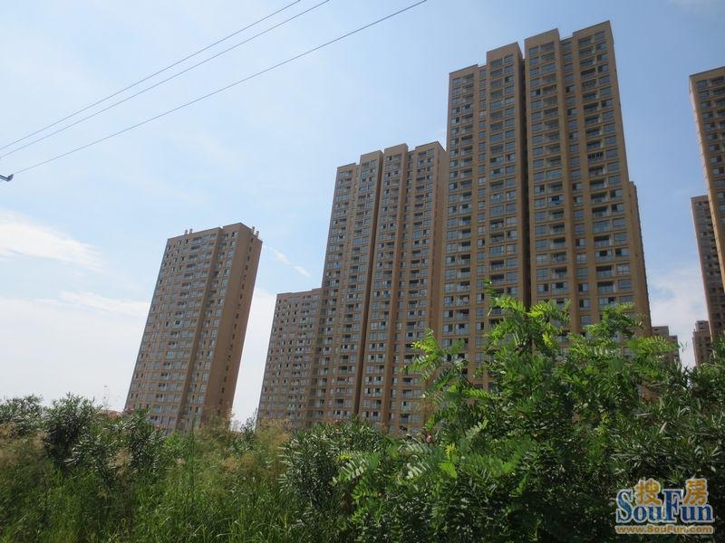 合生杭州湾国际新城青城山攻略住宿寺庙图片