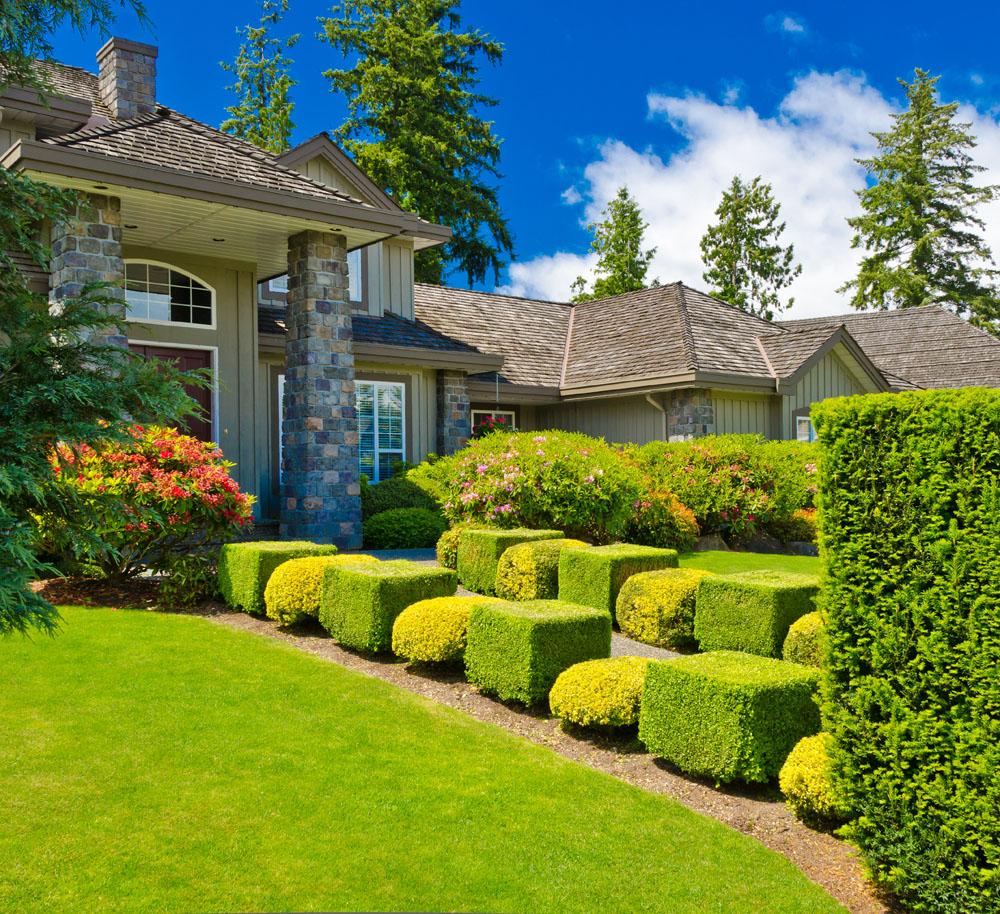 豪华别墅屋外花园草坪图片欣赏价格查询别墅设备图片